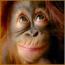 jOhNnYtEe's avatar