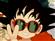 Milo44's avatar