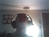 dongrimey69's avatar